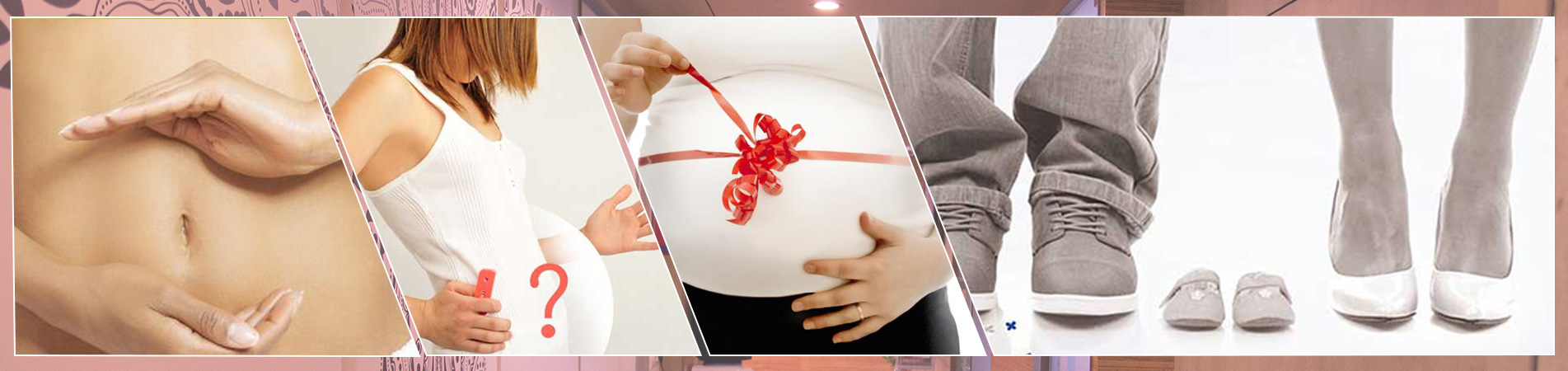 Female Infertility Treatment in Bangalore