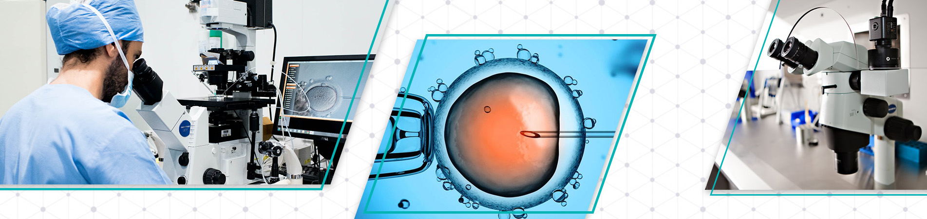 IVF Treatment Bangalore